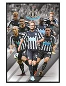 Gloss Black Framed Star Players Newcastle United Football Club 2014/15