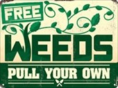 Free Weeds Pull Your Own