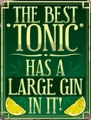The Best Tonic Has A Large Gin In It! Gin and Tonic