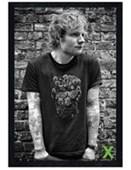 Black Wooden Framed Ed Sheeran Skull