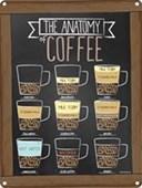 How Do You Take Your Coffee? The Anatomy Of Coffee