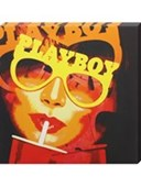 Vintage Playboy  Hugh Heffner's Playboy Canvas
