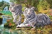 White Tiger Clan Hidden Images