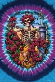 30 Year Anniversary The Grateful Dead