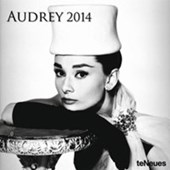Silver Screen Icon Audey Hepburn