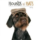 Hounds in Hats A Dog's Life
