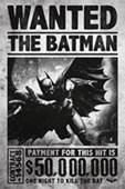 Wanted The Batman Batman Arkham Origins