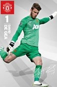 David De Gea Manchester United Football Club