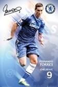 Fernando Torres Chelsea Football Club