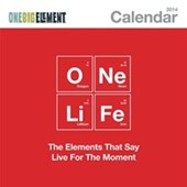 One Life One Big Element