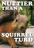 Nuttier Than A Squirrel Turd Nature in a Nutshell