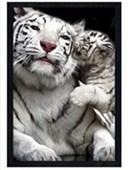 Black Wooden Framed Kiss White Tigers