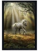 Black Wooden Framed Glimpse of a Unicorn Anne Stokes
