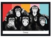 Black Wooden Framed Chimp Compilation The Chimp