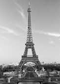 The Eiffel Tower Parisian Icon