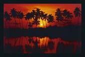 Sunset Silhouette Las Palmas