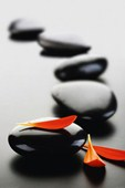 Polished Perfection Zen Stones
