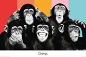 Chimp Compilation The Chimp