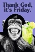 Thank God It's Friday The Chimp