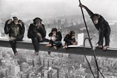 Chimps on a Girder Monkey Business