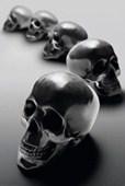 Zen Skulls Fantasy Fusion
