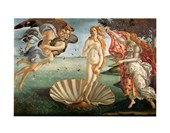 La Nascita Di Vernere Sandro Botticelli