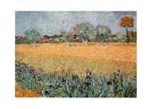 Vista Di Arles Con Irises Vincent Van Gogh