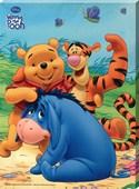 Fun with Pooh, Tigger & Eeyore Disney's Winnie the Pooh
