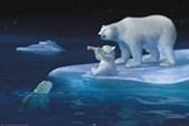 Polar Bear Refreshment Coca Cola