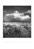 Suffolk Beach Bill Philip