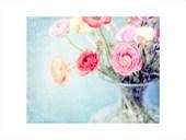 Spring Pastels Shana Rae