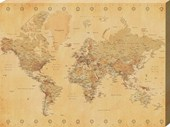 Vintage World Map Educational Earth