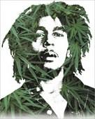 An Icon in Marijuana Bob Marley