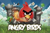 Evil Pigs Beware! Angry Birds