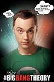 Sheldon Quotes The Big Bang Theory