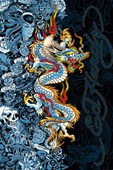 Blue Dragon Ed Hardy
