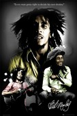 Every Man Gotta Right To Decide His Own Destiny Bob Marley