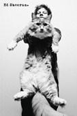 Fat Cat Ed Sheeran