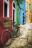 Romantic Alleyway Bike with Flowers