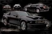 Hardcore Knight Mustang GT 500