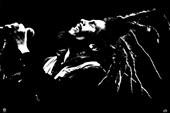 King of Dreads Bob Marley