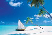 Paradise Found A Land Far Far Away!