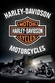 Dream Rides! Harley Davidson