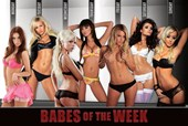 A Girl A Day! Babes of the Week