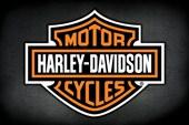 Iconic Motorbike Logo Harley Davidson