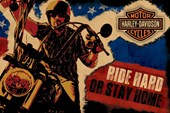 Ride Hard or Stay Home Harley Davidson