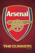 The Gunners Club Crest Arsenal Football Club