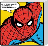 Great Power & Responsibility Spiderman