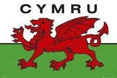 Welsh National Flag (Cymru) Flag of the Country of Wales