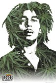 Bob Marley in Cannabis Musical Icon in a Pop Art style